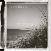 I Won't Forget You — The Fortunate