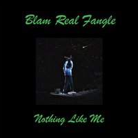 Nothing Like Me — Blam Real Fangle