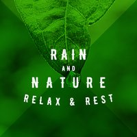 Rain & Nature: Relax & Rest — Soothing Sounds