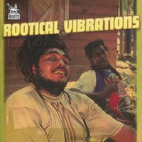 Rootical Vibrations — сборник