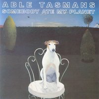 Somebody Ate My Planet — Able Tasmans