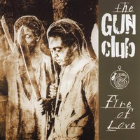 Fire of Love — The Gun Club