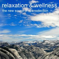 Relaxing Music for Wellness, Meditation, Yoga, Serenity and Natural Stress Relief with Classical Piano and Nature Sounds — Relaxation & Wellness