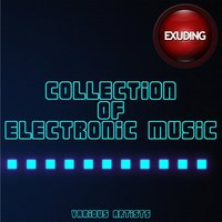 Collection of Electronic Music, Vol. 9 — сборник