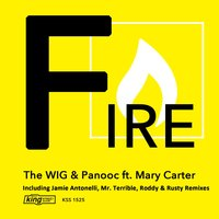 Fire (feat. Mary Carter) — The WIG, Mary Carter, Panooc, The Wig & Panooc