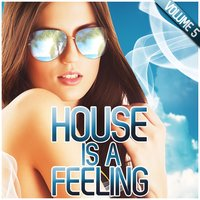 House Is a Feeling, Vol. 5 — сборник