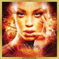 Fierce Angel Presents the Collection II — сборник