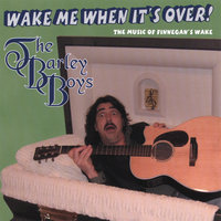 Wake Me When It's Over! — The Barley Boys