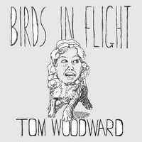 Birds in Flight - Single — Tom Woodward
