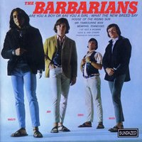 Are You A Boy Or Are You A Girl? — The Barbarians