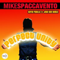 Perfect Unity - EP — Mike Spaccavento