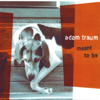 Meant to Be — Adam Traum