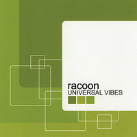 Universal Vibes — Racoon