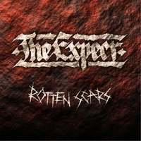 Rotten Scars — The Expect