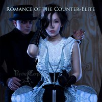 Romance of the Counter-Elite — Psyche Corporation