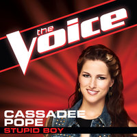 Stupid Boy — Cassadee Pope