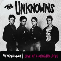Reknown: Live in a Niagara Dive — The Unknowns