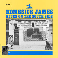 Blues On The South Side — Homesick James