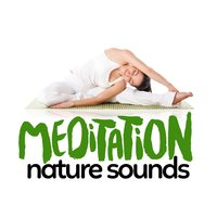 Meditation: Nature Sounds — Mediation Sounds of Nature