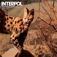 The Heinrich Maneuver — Interpol