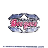 A Tribute To The Bee Gees — Boogie Disco Nights