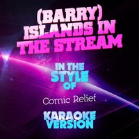 (Barry) Islands in the Stream (In the Style of Comic Relief) - Single — Ameritz Audio Karaoke