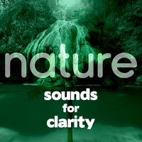 Nature Sounds for Clarity — Deep Sleep Nature Sounds