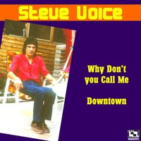 Why Don't You Call Me — Steve Voice