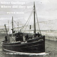 Silver Darlings: Where Did They Go? — Peter Hood