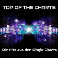 Top of the Charts - Die Hits aus den Single Charts — сборник