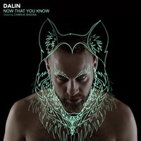 Now That You Know — DaLin, Charlie Sheena