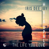 The Life You Love — Iris Dee Jay