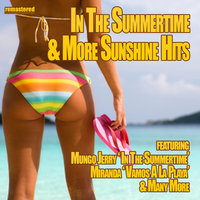 In the Summertime & More Sunshine Hits — сборник