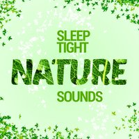 Sleep Tight: Nature Sounds — Nature Sounds Sleep