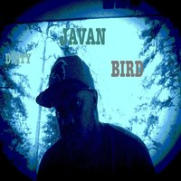 Dirty Bird — Javan