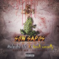 Son Sapos — Rehab On The Track, Malandro Life, Vaniti Vercetty