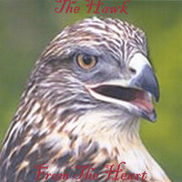 From The Heart — The Hawk