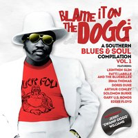 Blame It on the Dogg: A Southern Blues & Soul Compilation Vol. 1 — сборник