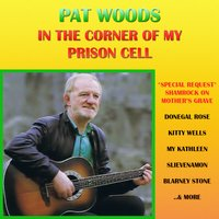 In the Corner of My Prison Cell — Pat Woods