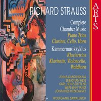 Strauss: Complete Chamber Music, Vol. 9 — Рихард Штраус, Wolfgang Sawallisch, Wen-Sinn Yang, Johannes Ritzkowsky, Sebastian Hess, Anna Kandinskaia, Wolfgang Sawallisch, Sebastian Hess, Anna Kandinskaia, Karl-Heinz Steffens, Wen-Sinn Yang, Johannes Ritzkowsky