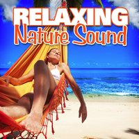 Relaxing Nature Sound — Nature Sounds for Sleep and Relaxation