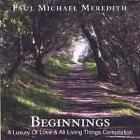 Beginnings — Paul Michael Meredith