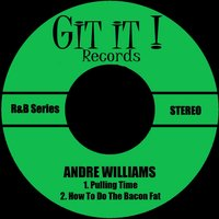 Pulling Time — Andre Williams, The Don Juans