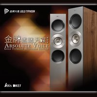 Absolute Voice Gold Typhoon — Absolute Voices