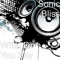 What Do You Say — SONIC BLISS