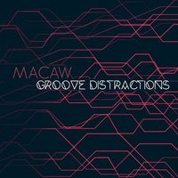 Groove Distractions — Macaw