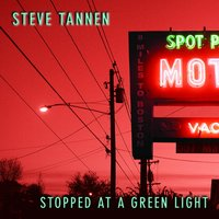 Stopped at a Green Light — Steve Tannen