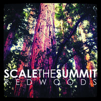 Redwoods — Scale the Summit