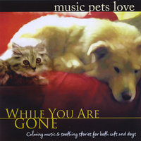 Music Pets Love: While You Are Gone — Bradley Joseph