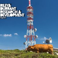 Research & Development — Riley, Riley & Durrant, Durrant